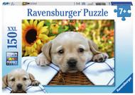 Ravensburger Puppy Picnic