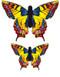 One swallowtail Kite
