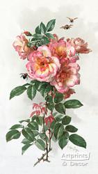 Wild Roses by Paul de Longpre - Art Print