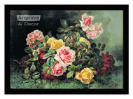 Gathering of Roses by Paul de Longpre – Framed Art Print