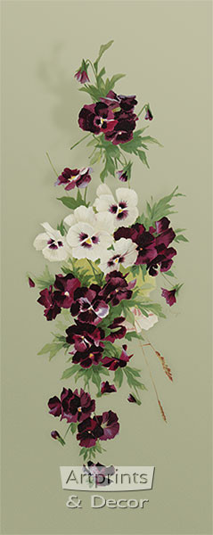 Purple & White Pansies by Emilie Vouga - Art Print