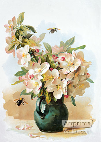 Apple Blossoms by Paul de Longpre - Framed Art Print