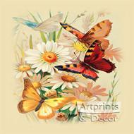 Butterflies & Daisies - Art Print