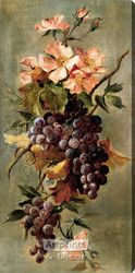 Vineyard Floral by G. Lynch - Stretched Canvas Art Print