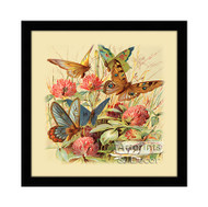 Butterflies & Clover - Framed Art Print