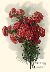 Lawson Pink Carnations by Paul de Longpre - Art Print