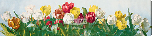 A Shower of Tulips by Paul de Longpre - Stretched Canvas Art Print