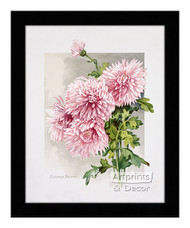 October Beauty - Framed Art Print