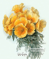 Yellow Poppies by Paul de Longpre - Art Print
