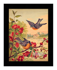 Blossoms & Bluebirds - Framed Art Print