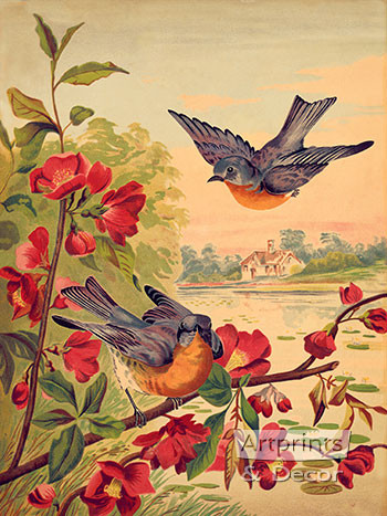 Blossoms & Bluebirds - Art Print