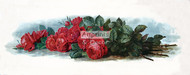American Beauty Roses by Paul de Longpre - Art Print