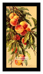 Peaches - Framed Art Print