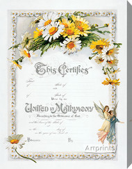 Daisies Marriage Certificate - Stretched Canvas Art Print