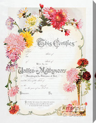 Chrysanthemum Marriage Certificate - Stretched Canvas Art Print