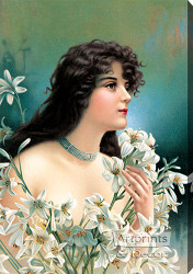 Lily - Stretched Canvas Art Print