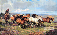 The Stampede by Harold Septimus Power - Art Print