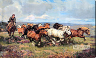 The Stampede by Harold Septimus Power - Stretched Canvas Art Print