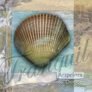 Tranquil Shell by Todd Williams - Art Print