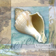 Serenity Shell by Todd Williams - Art Print