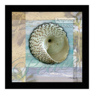 *Peace Shell - Framed Art Print