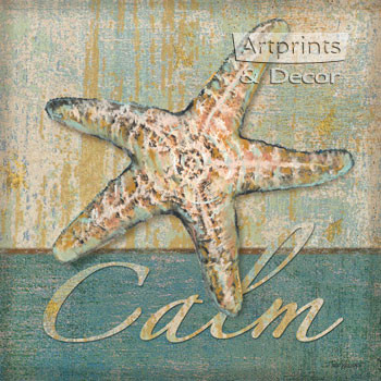 Calm Shell by Todd Williams - Art Print