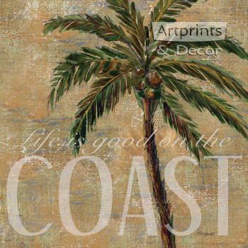 Coastal Palm by Todd Williams - Art Print