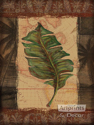 Tropical Leaf I by Todd Williams - Art Print