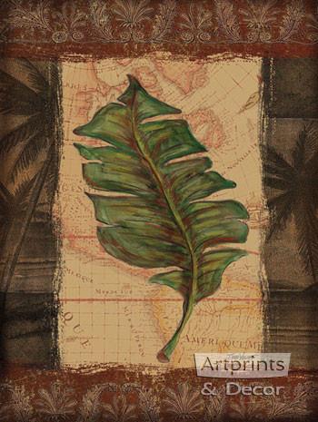 Tropical Leaf I by Todd Williams - Art Print
