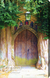 Forest Doorway by Sandra Kuck - Stretched Canvas Art Print