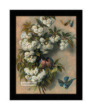 The Flowering Perch - Framed Art Print