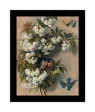 The Flowering Perch - Framed Art Print