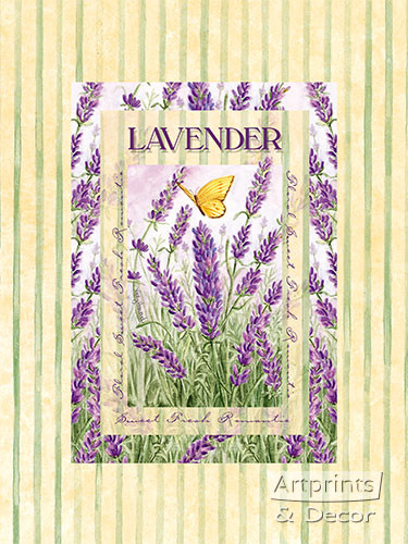 Lavender - Framed Art Print