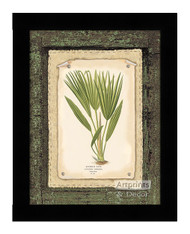 Bourbon Palm - Framed Art Print