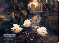 Swan Lake by S. C. Morley - Stretched Canvas Art Print