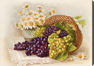 Grapes & Daisies by Paul de Longpre - Stretched Canvas Art Print