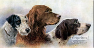 Kennel Companions by Eugenie M. Valter - Stretched Canvas Art Print