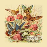 Butterflies & Clover - Art Print