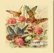 Butterflies & Clover - Stretched Canvas Art Print