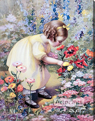 Poppy Love by Annie Benson Müller - Stretched Canvas Art Print