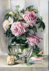 La France Roses by Amy Gross - Stretched Canvas Art Print