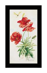 Poppies by Paul de Longpre - Framed Art Print*
