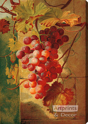 Red Grapes by William Pickles London - Stretched Canvas Art Print