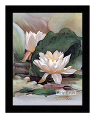 Water Lily - Framed Art Print