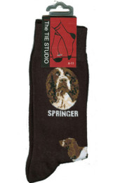 Springer Spaniel Socks