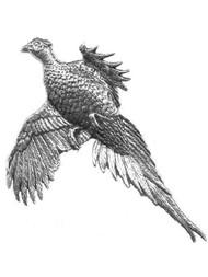 Large Flying Pheasant Pewter Pin