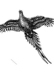 High Pheasant Pewter Pin