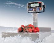 TorRey EQB Series Wash Down Scales