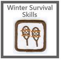 Book 4 - Winter Survival Skills PDF