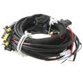 AC STAG 200 GoFast Wiring Loom